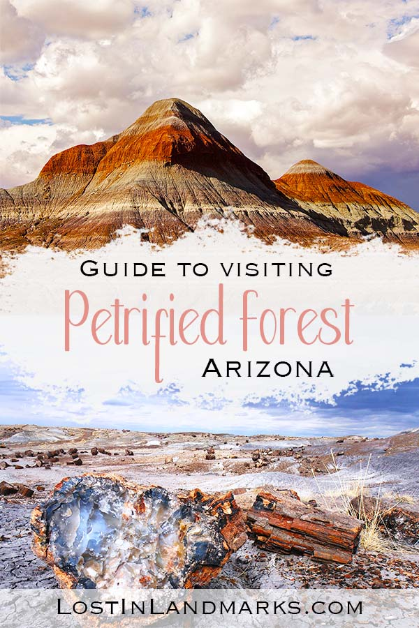 The Petrified Forest National Park is a great day trip if you're visiting Arizona. It also has Route 66 cut right through it so one not to miss if you're travelling the road - loads of old history to learn about too. #nationalparks #usatravel #arizonatravel
