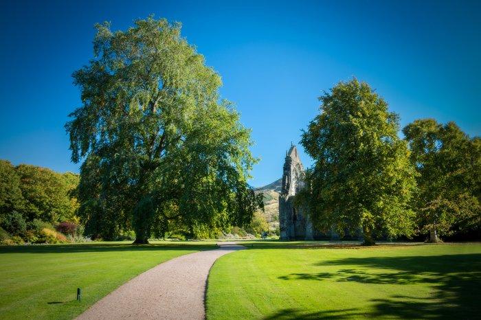 palace gardens holyrood